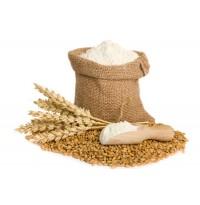 Whole wheat Atta (from Navadarshanam)
