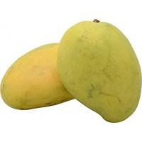 Mango - Chaunsa (Chausa) - Won't turn complete yellow