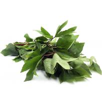 Gongura Leaves Bunch (Sorrel)