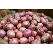 Why is Onion So Expensive in October - November Every Year?