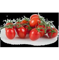 Cherry Tomato (OVAL)