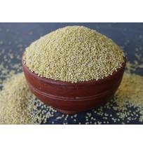 Proso Millet -(Panivaragu)