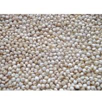 Millet - White Jowar (Sorgum)