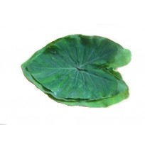 Fresh Arbi (Colocasia) Leaves (Pack of 5)