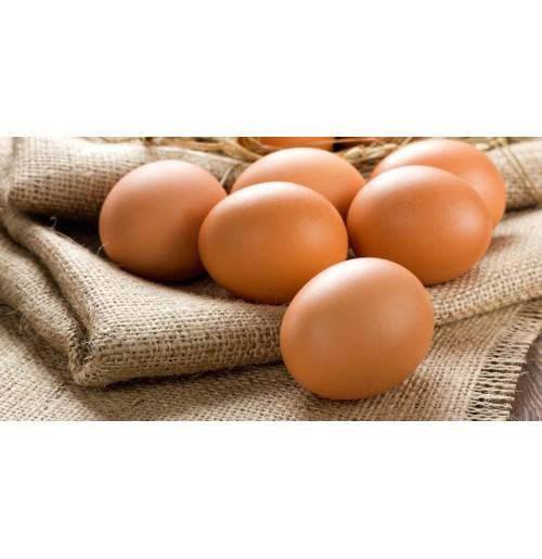 Brown Eggs / Free Range Eggs (1 Dozen)