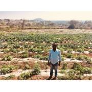 Life of an organic farmer- Munisamy